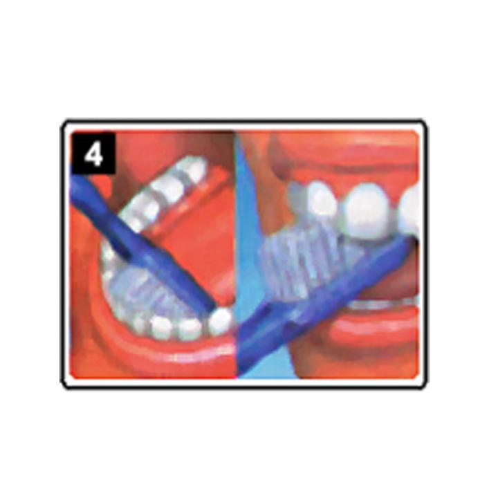 dentiste-chablais-article-hygiene-detartrage-brossage-04